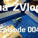 ZVlogg #004