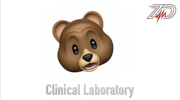 zdoggmd clinical laboratory medimoji teddy bear